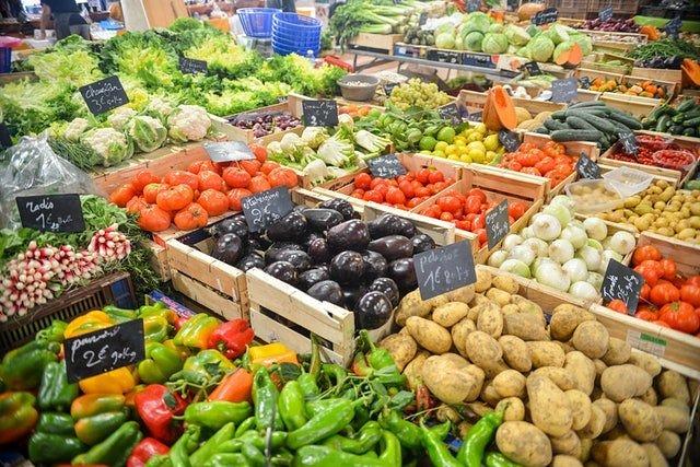 151308227753858500 Dieta wegetariańska - porady